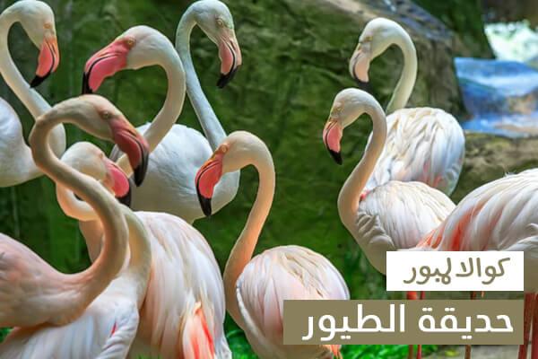 حديقة الطيور في كوالالمبور, من اهم الاماكن السياحية في كوالالمبور